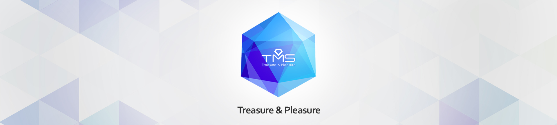 TMS Treasure & Pleasure
